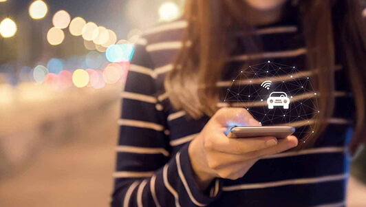 Quickly adopt to mobility business models 1